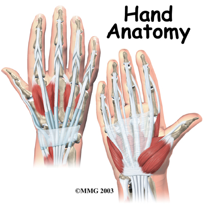 Common Finger Hand Injuries